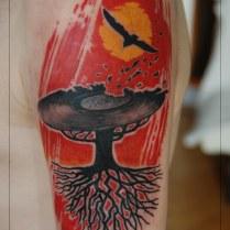 maciek drzewo