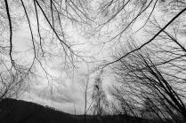grzegorz_pastuszak_photography-0017